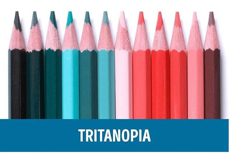 Color-blindness-demonstration-Tritanopia-Vision
