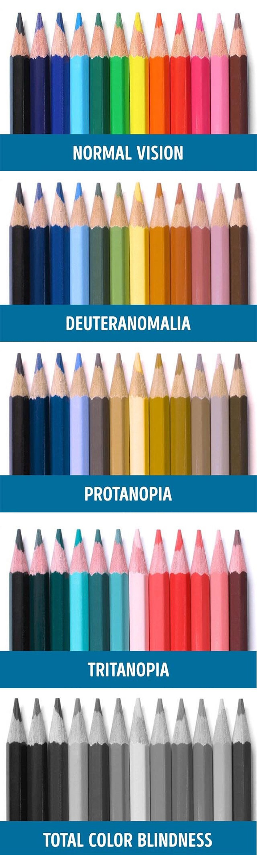 Color-blindness-demonstration