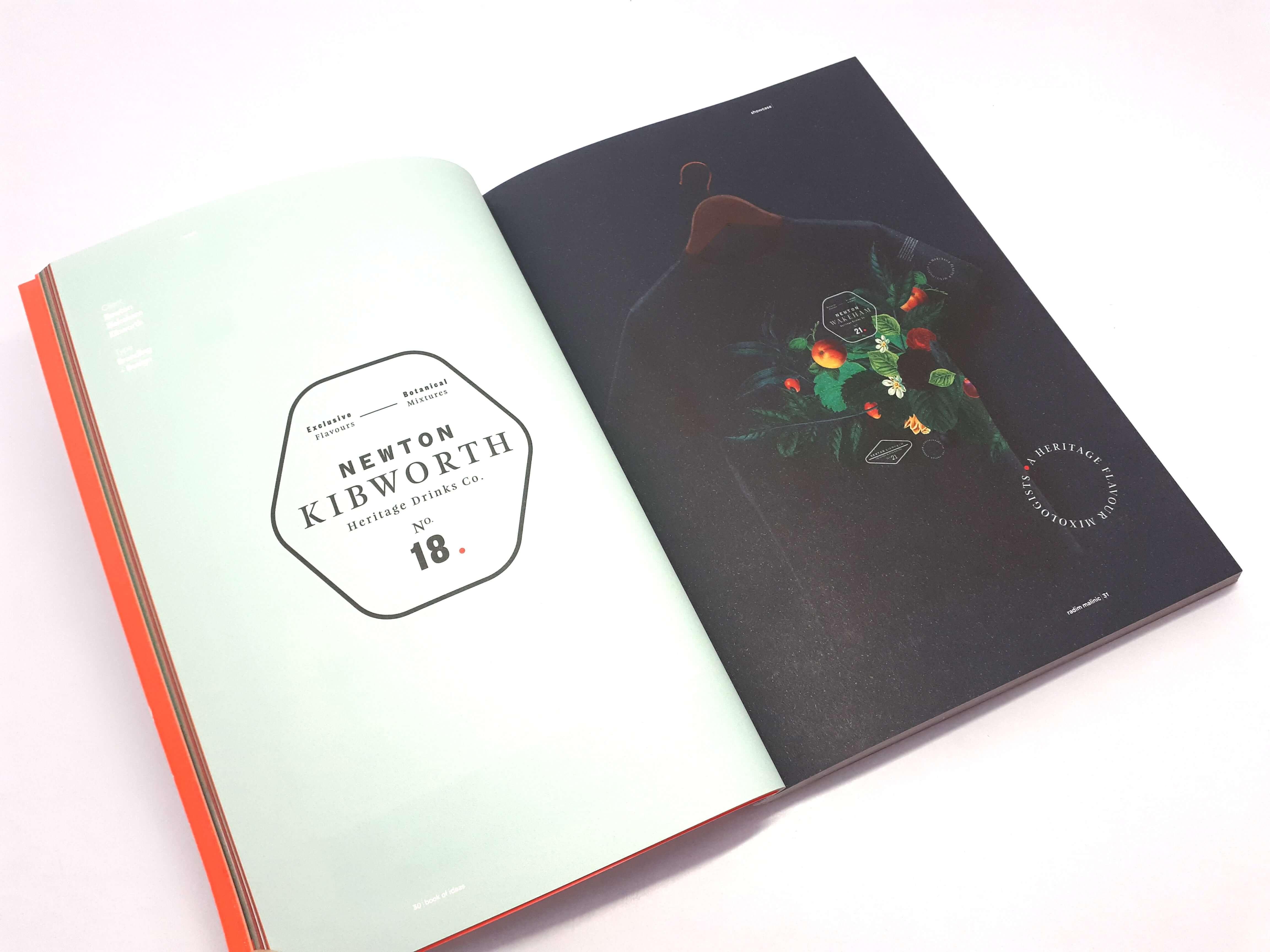 Book of ideas Volume 2 by Radim Malinic