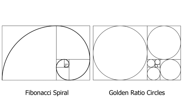 How To Use the Golden Ratio In Graphic Design