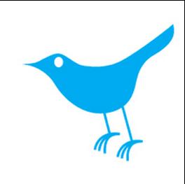 El primer icono de logotipo de pájaro de Twitter $ 15