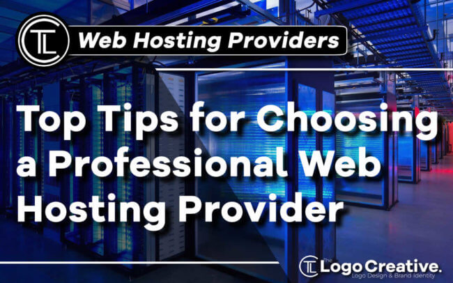 Top Tips for Choosing a Professional Web Hosting Provider